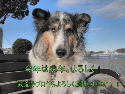 j180101002.JPG